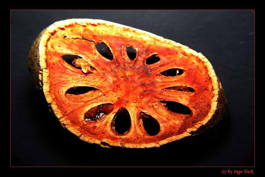 getrocknete Orange