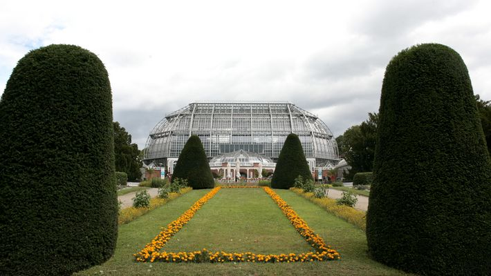 gewächshaus im botanischen garten berlin