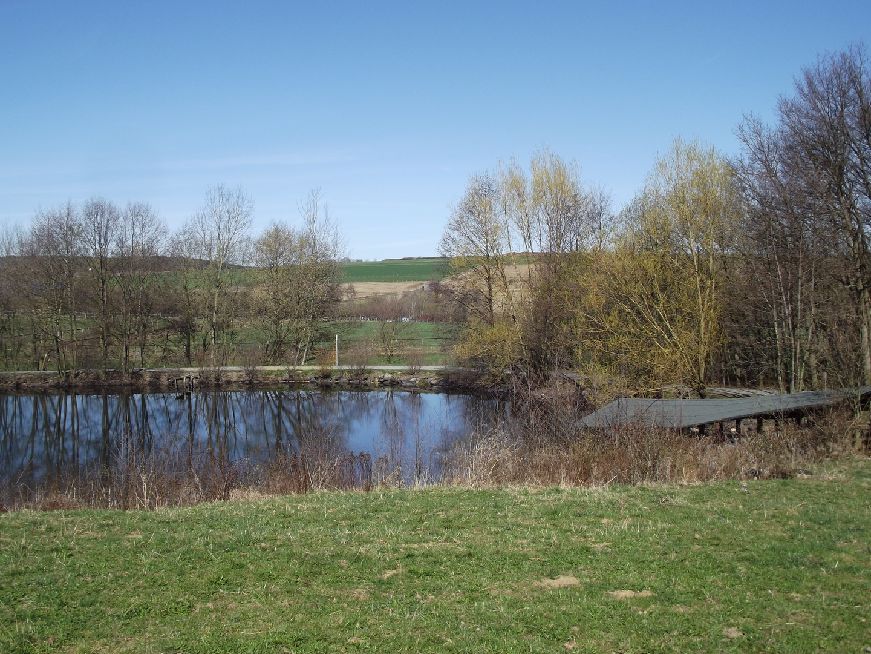 Gewässer vor Kappwindmühle im Hessenpark