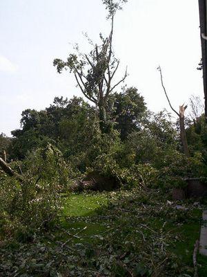 Gewaltvolle Rückkehr der Natur... <<< Tornadoschäden in Duisburg - Rheinhausen...