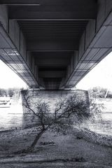 Gewidmet denen; die unter Brücken Schutz suchen müssen