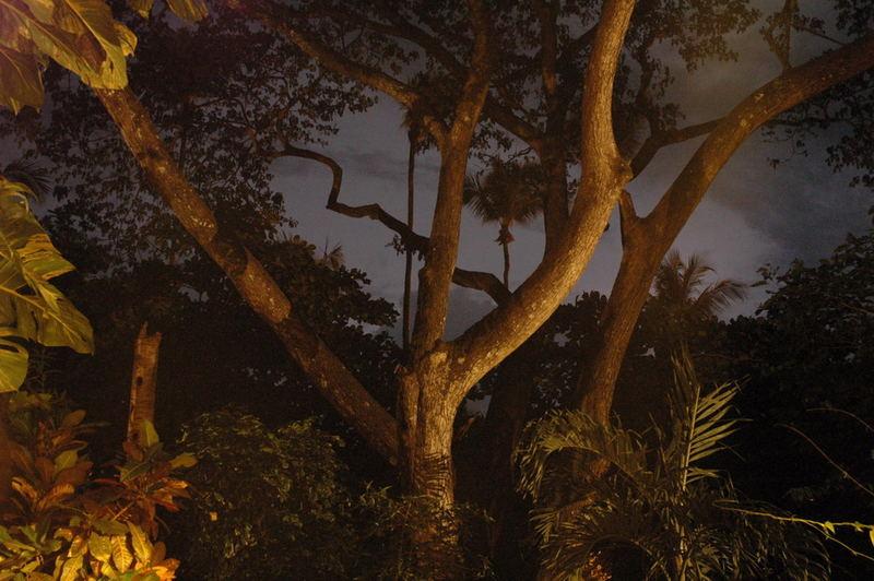 Gewitter in Costa Rica bei Nacht