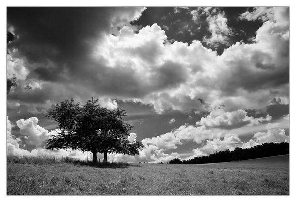 Gewitter über'm Holzland