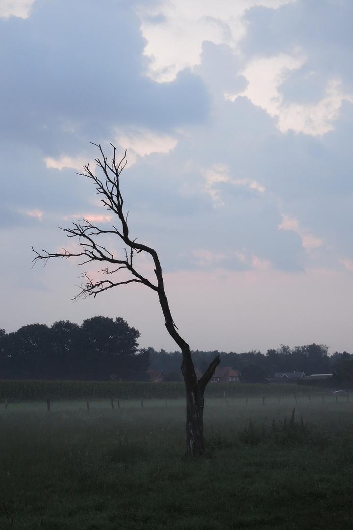 Gewitterstimmung am Morgen