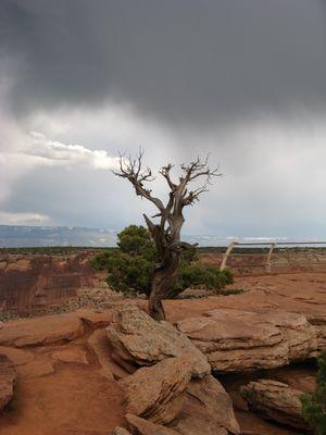 Gewitterstimmung im Colorado National Monument