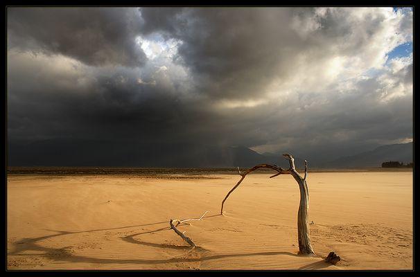 Gewittersturm im Tal der toten Bäume