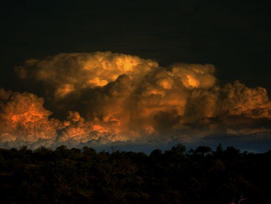 Gewitterwolke über Kruger Park