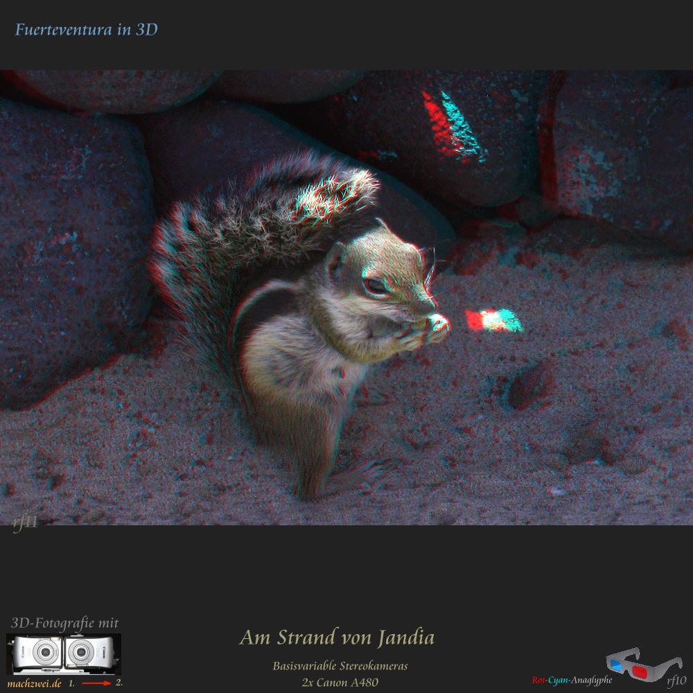 Gezoomte Stereofotos: Fuerteventura in 3D