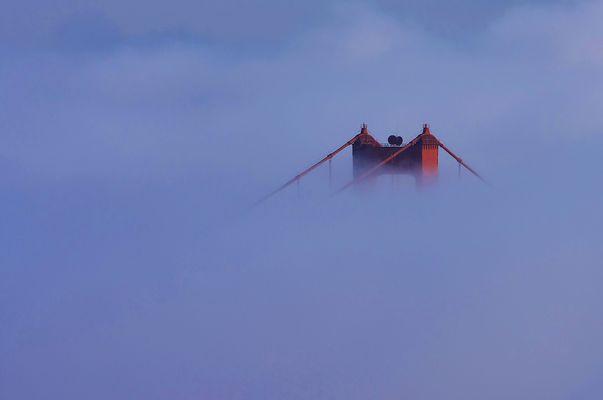 GG im Nebel