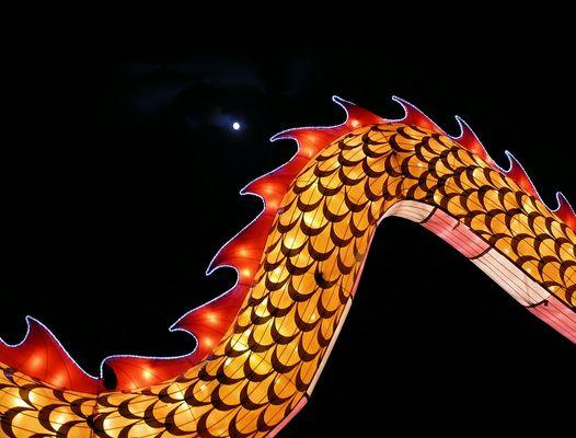 Giant Dragon Tail