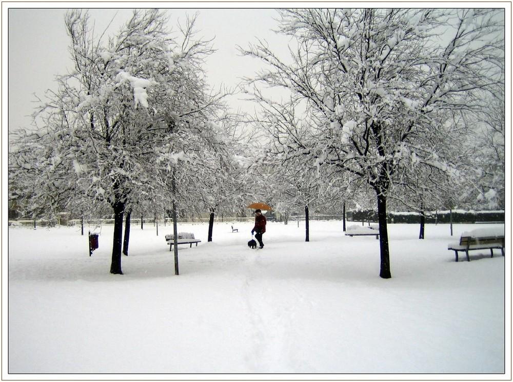 Giardini d'inverno