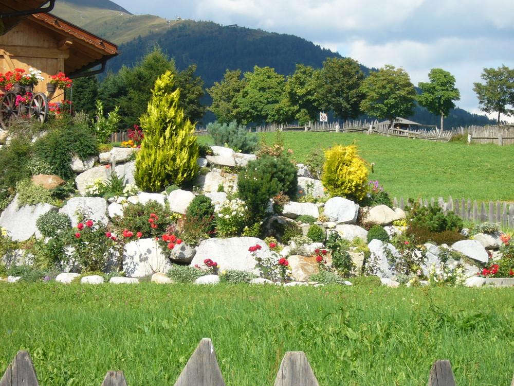 Giardino di montagna foto immagini paesaggi montagna - Giardini di montagna ...