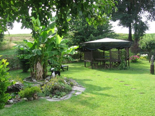 Giardino foto immagini paesaggi campagna natura foto for Foto angoli giardino