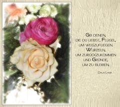 Gib denen, die du liebst....