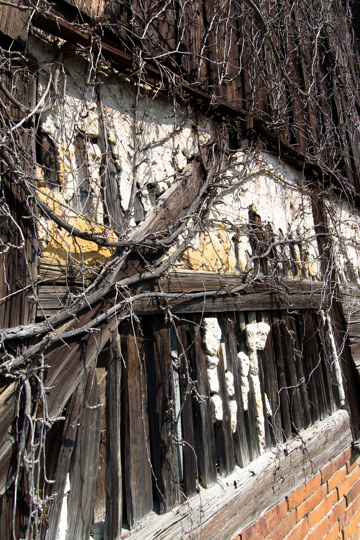 Giebel einer alten Scheune in Daubitz