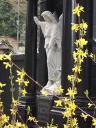 Giessen-Alter-Friedhof