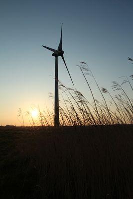 Giganten mitten in Ostfriesland