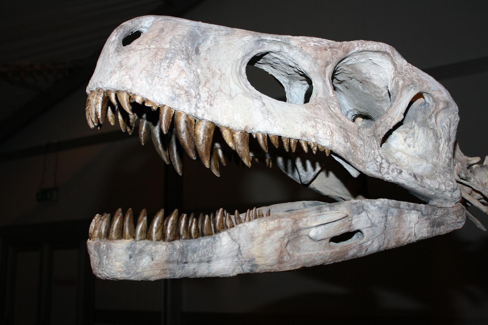Gigasaurier