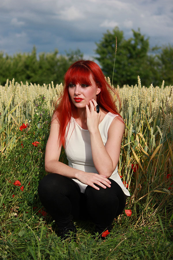 Ginger and the cornfield 1
