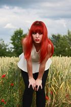Ginger and the cornfield 2