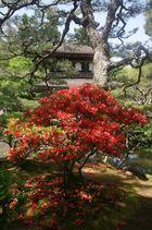 Ginkakuji-Tempel Kyoto