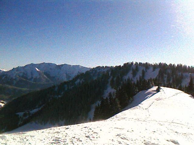 Gipfelgrat zum Roßkopf (1580m)