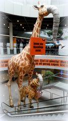 Giraffanten.....
