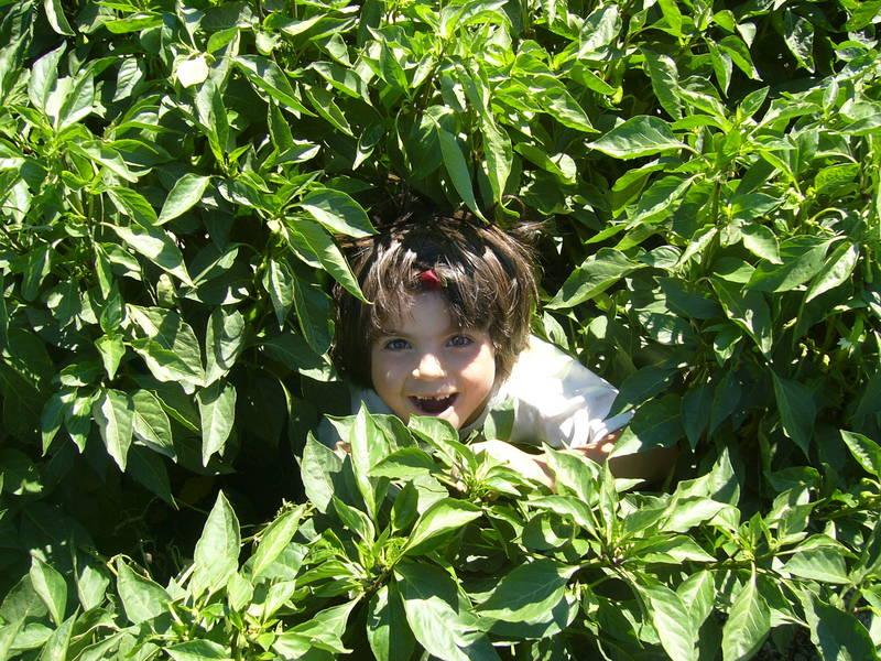 Girl in between peppers