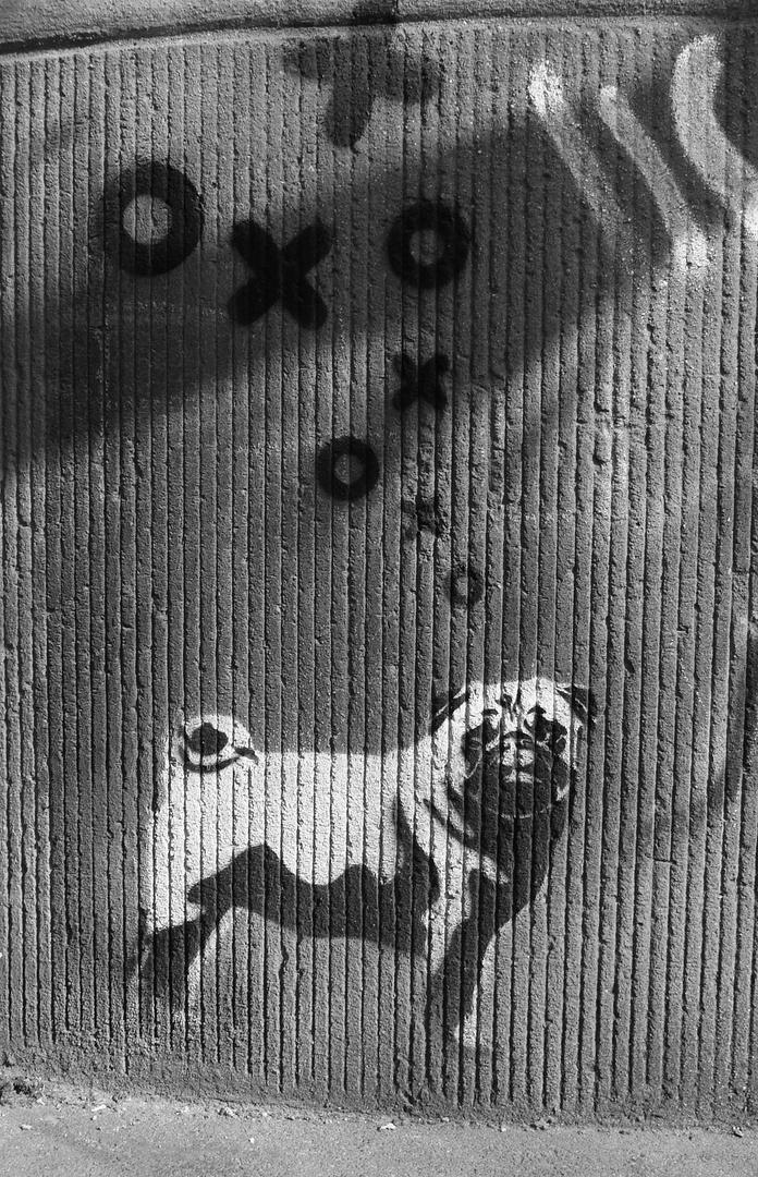 Girl`s Dog