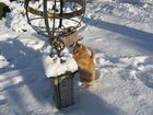Gismo mit Sonnenuhr im Schnee