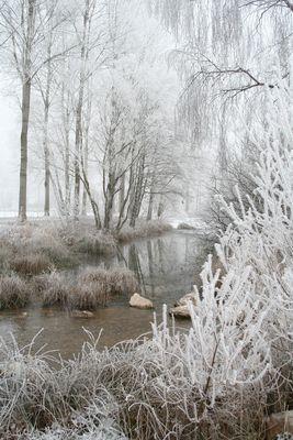 Givre hiver 2008/2009