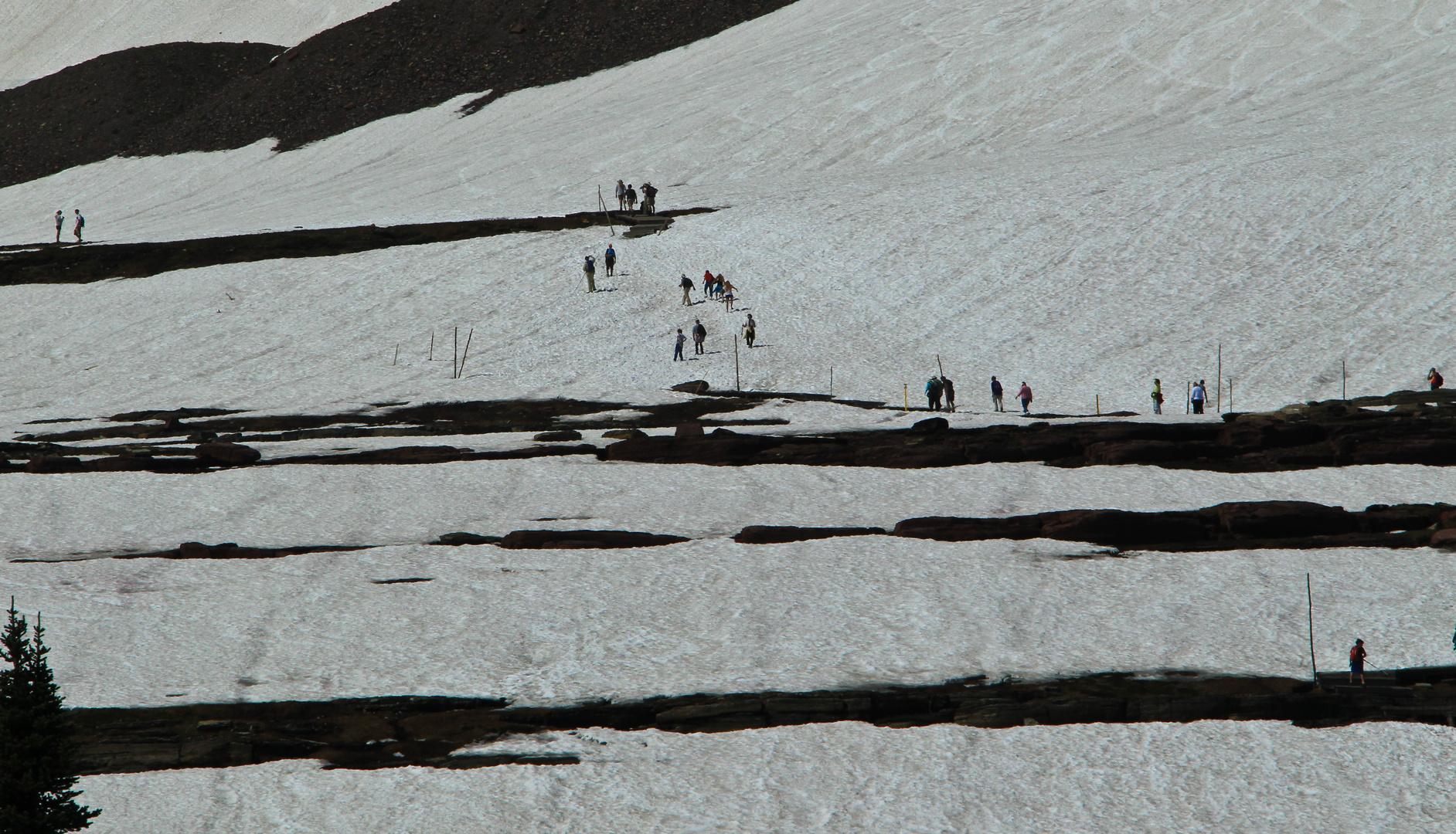 Glacier NP, Glacier