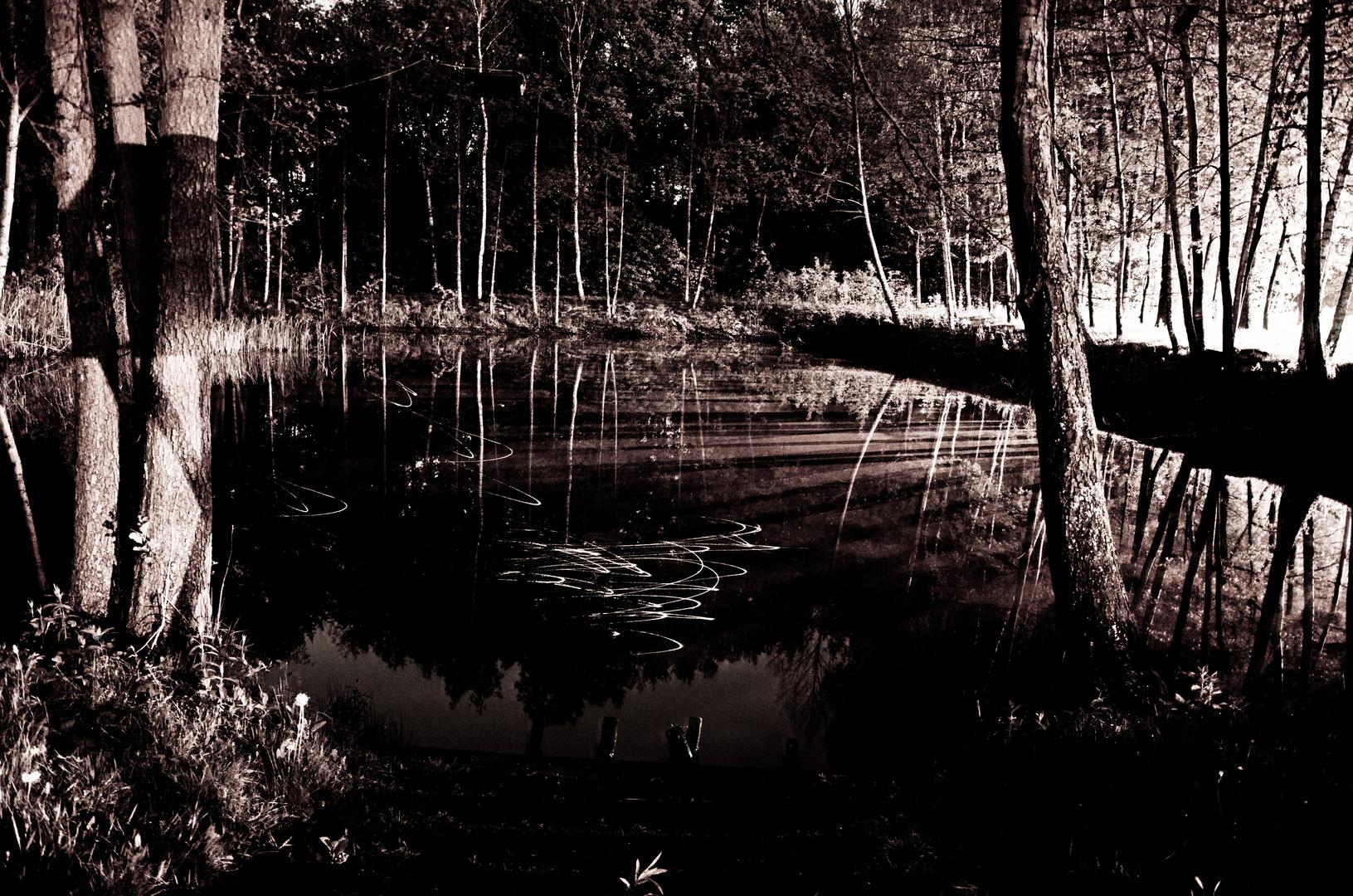 Glänzender Teich