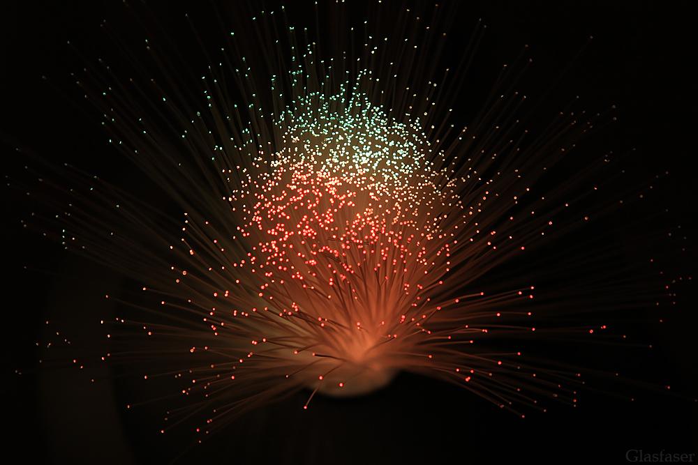 Glasfaser oder doch Supernova ?