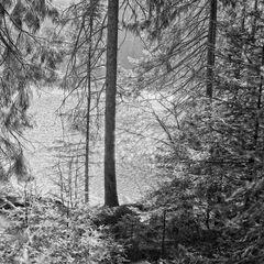 Glaswaldsee II