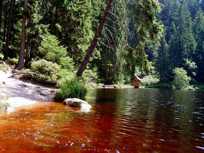 Glaswaldsee Schwarzwald