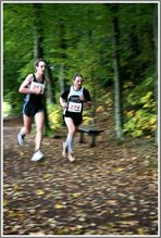 Glauchauer Herbstlauf 2009 (4)