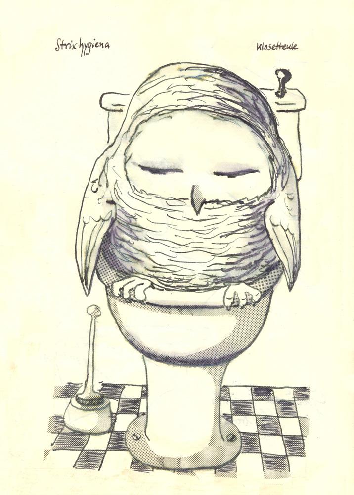 Glaux hygiena