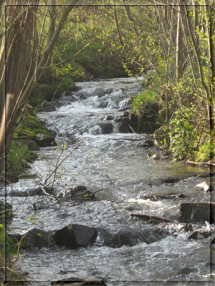 Gleibach in der Nähe der Mündung in die Lahn