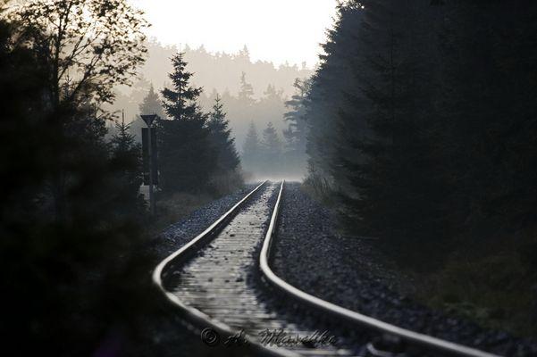 Gleise der Brockenbahn im Morgenlicht