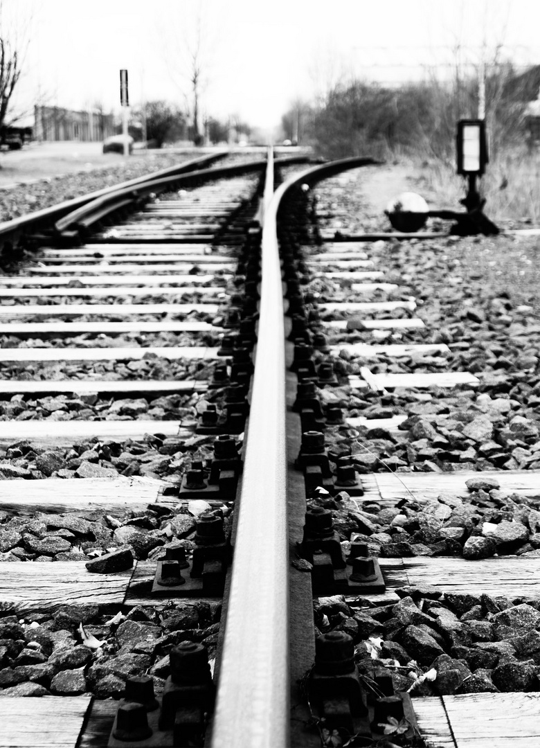 Gleislauf