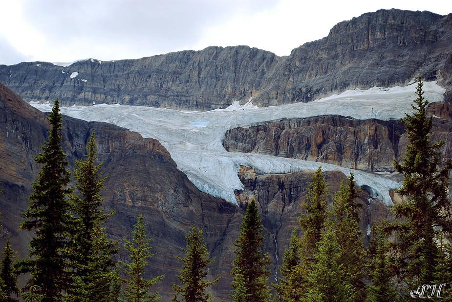 Gletscher am Icefield Parkway
