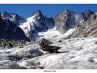 Gletscher Ente