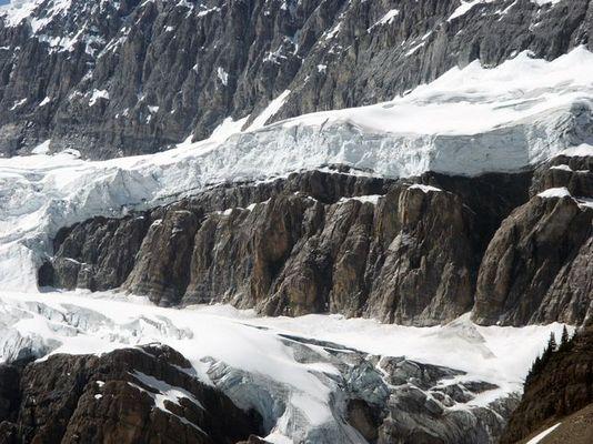 Gletschereis am Icefield Parkway