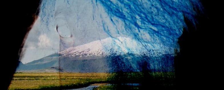Gletscherpferd