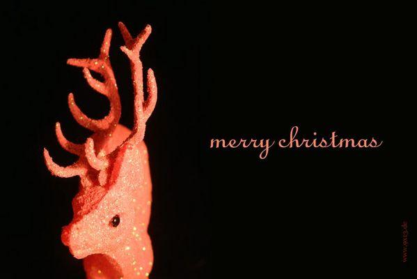 Glitzer-Bambi zur Weihnachtszeit
