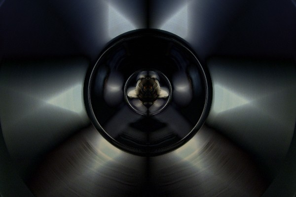 .globephone.