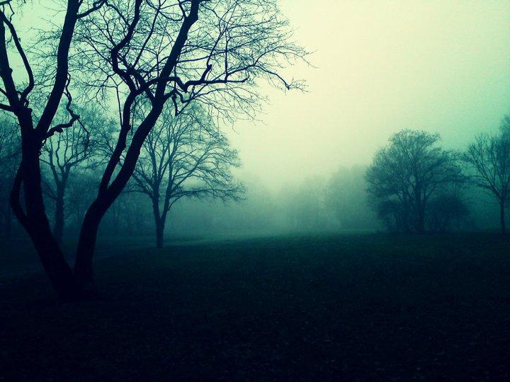 Gloomy Day