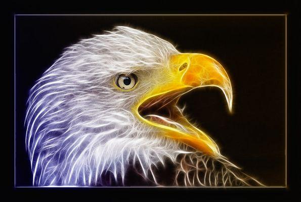 Glowing Eagle