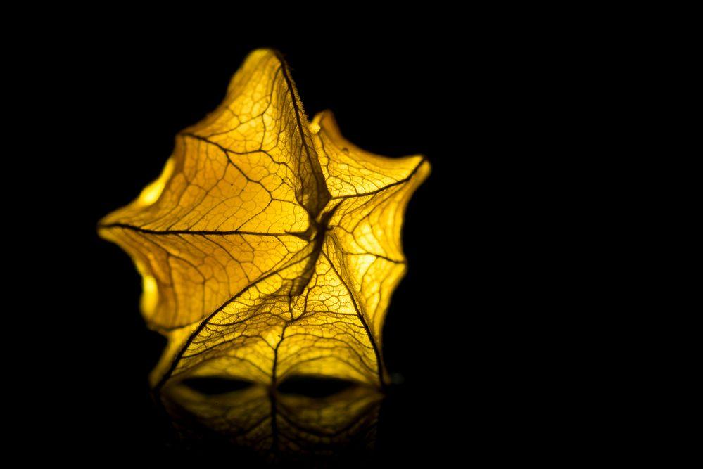 glowing FruitStar
